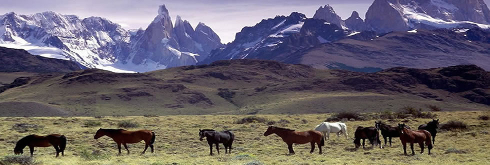 Experience the majesty of the Glaciers in Patagonia, Argentina