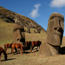 Horse Riding Easter Island